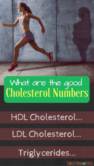 What are the good cholesterol numbers