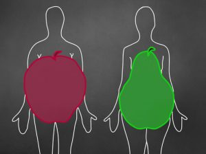 apple and pear shape bodies