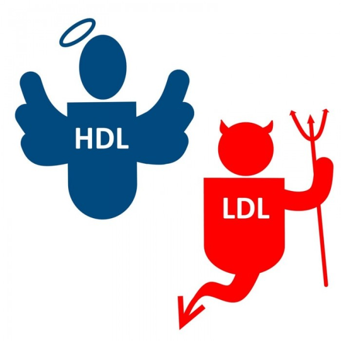 hdl-good-ldl-bad